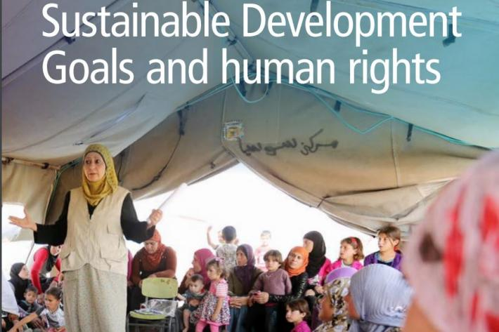 Sustainable Development Goals and human rights - cover