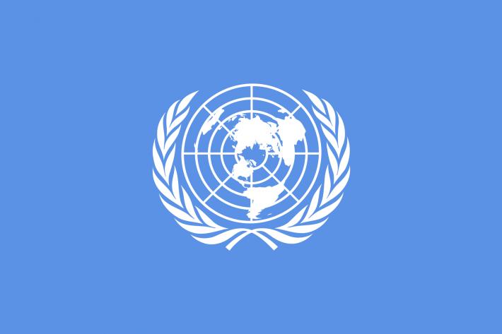 国連と人権 | IPPF