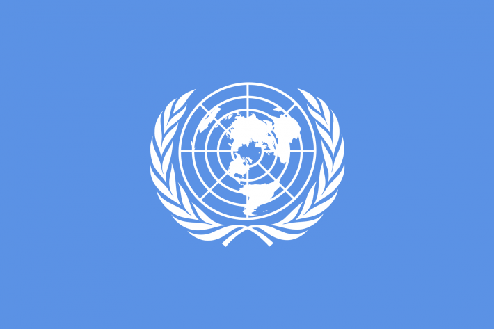 """While Rihanna, Greta Thunberg, and Mia Khalifa extended support to farmers' protest in India, UN Human Rights asked for """"maximum restraint""""."""