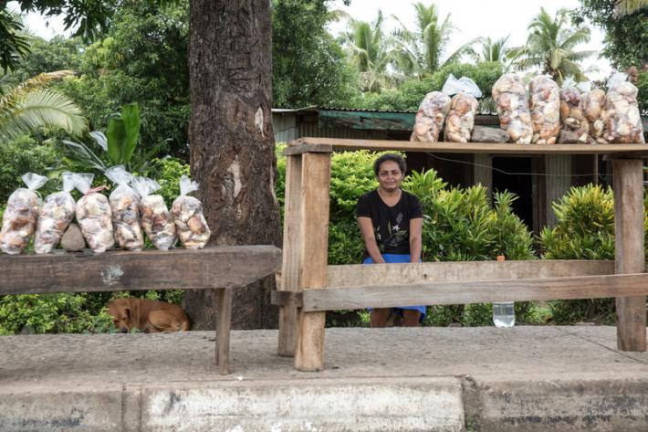 Parvinder at her road side stall selling Hawaiian chestnuts in Natalacake village in Ra Province.